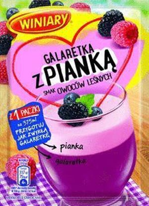 Picture of GALARETKA Z PIANKA OWOCE LESNE  72G WINIARY