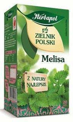 Picture of HERBATA HERBAPOL ZIELNIK MELISA 20*2G