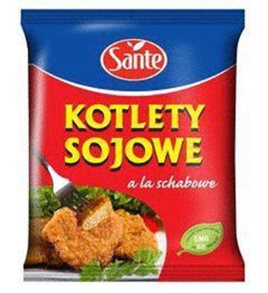 Picture of KOTLETY SOJOWE A'LA SCHABOWE 100G SANTE