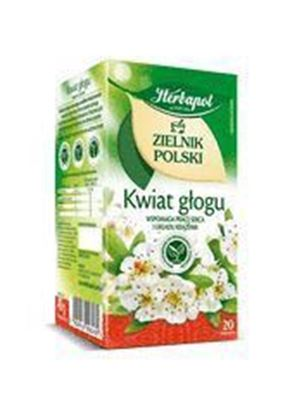 Picture of HERBATA HERBAPOL ZIELNIK KWIAT GLOGU 20*2G